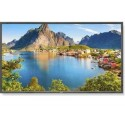 NEC Display Solutions 80 in. LED - LCD Backlit Commercial, Grade Display